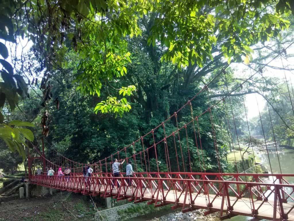 Jembatan Gantung Di Kebun Raya Bogor